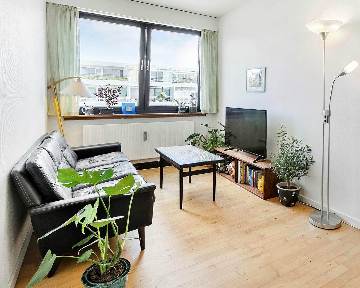 Frem med planterne når boligen skal sælges!